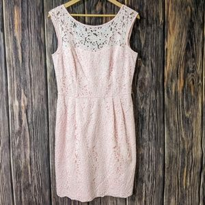 WHBM Lace Pink cocktail Dress